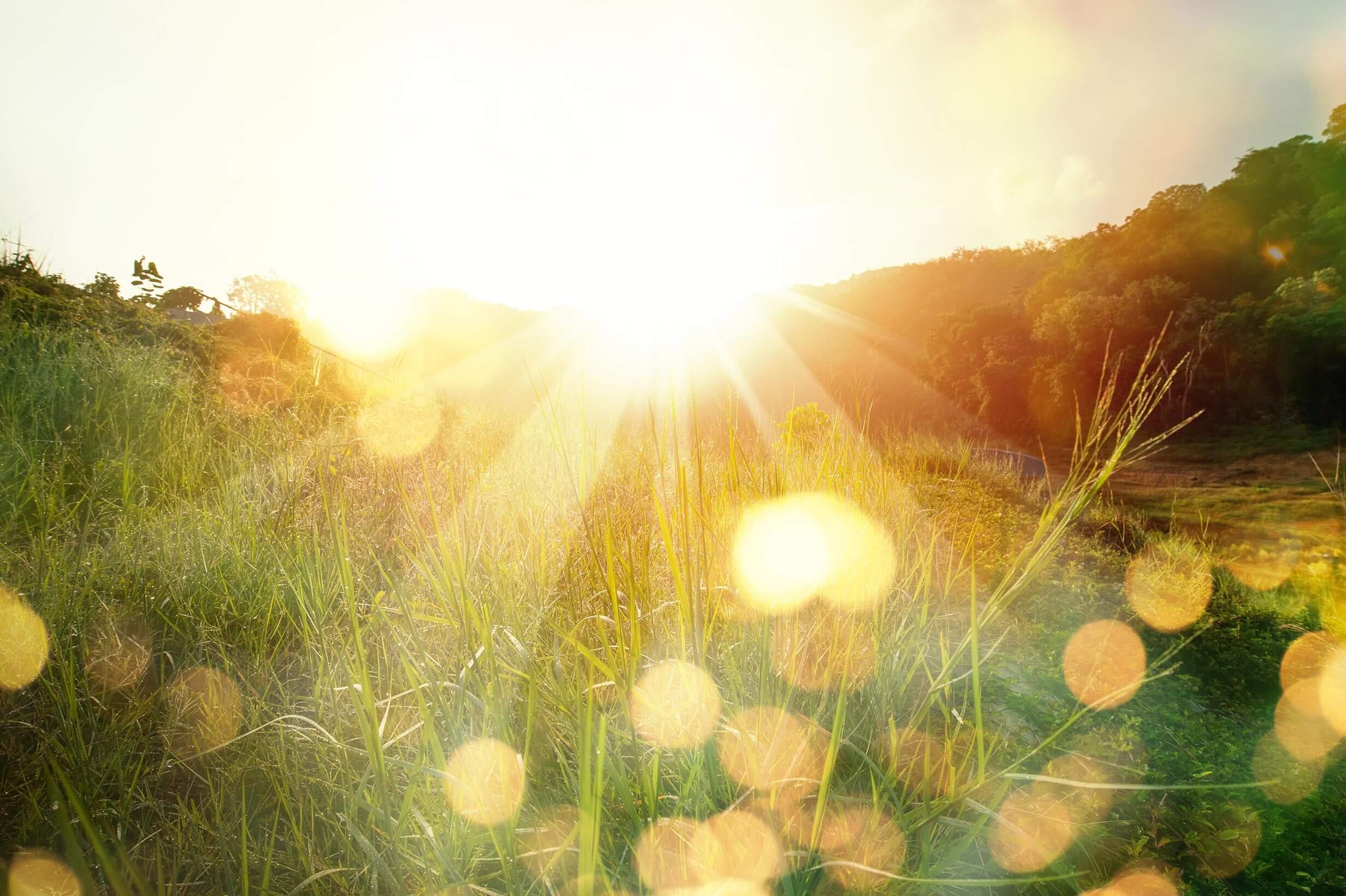 Folaris Sonne