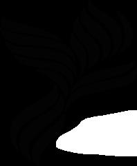 Folaris Logo-schwarz